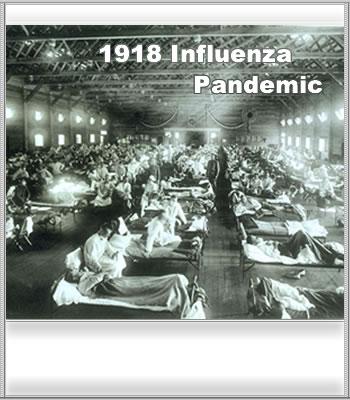 Influenza case study